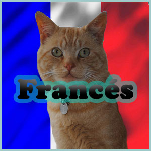 Nombres para Gatos en Francés