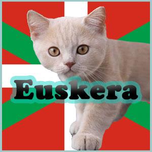 Nombres para gatos en Euskera